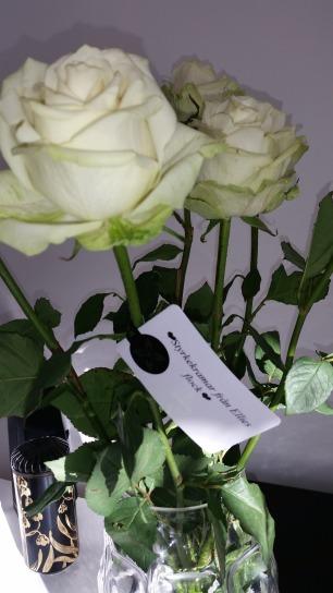 Ellies blommor