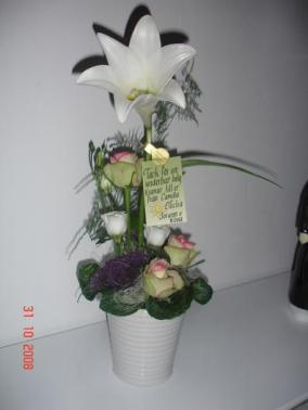 Kenneltrõff 08 FIN blomma frÕn Electra och Nova