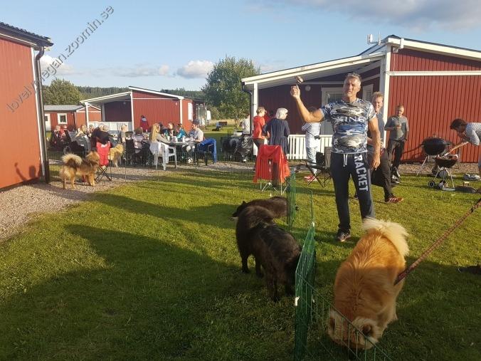Grillning kennelträff 2017
