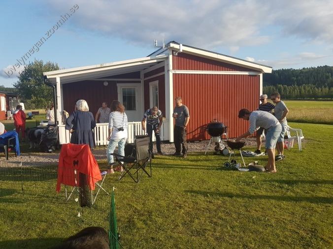 Grll kennelträff 2017