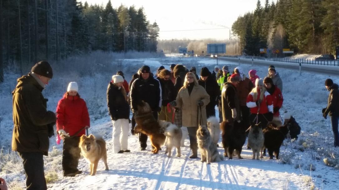 Vinterpromenad 2